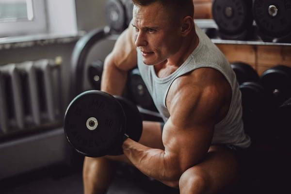Full Body Workout Vs Split For Mass-2