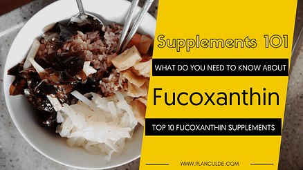 TOP 10 FUCOXANTHIN SUPPLEMENTS