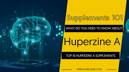 TOP 10 HUPERZINE A SUPPLEMENTS