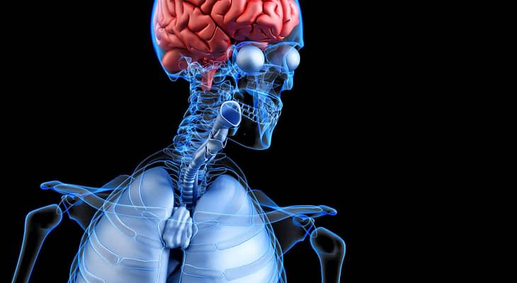 How to Increase Dopamine with Supplements