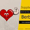 TOP 10 BERBERINE SUPPLEMENTS