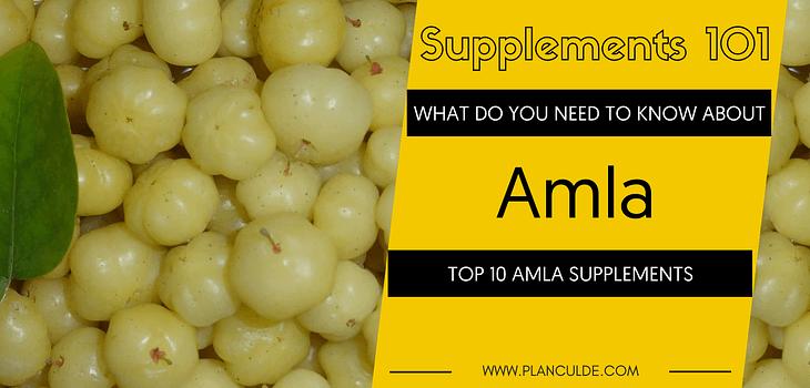 TOP 10 AMLA SUPPLEMENTS