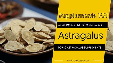 TOP 10 ASTRAGALUS SUPPLEMENTS