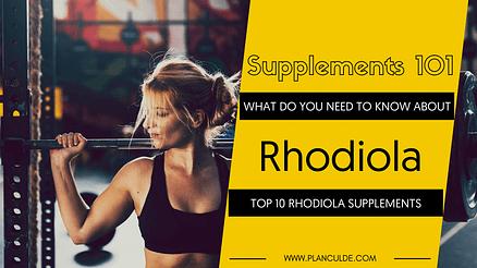 TOP 10 RHODIOLA SUPPLEMENTS