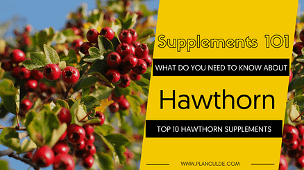 TOP 10 HAWTHORN SUPPLEMENTS