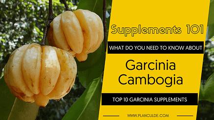 TOP 10 GARCINIA CAMBOGIA SUPPLEMENTS