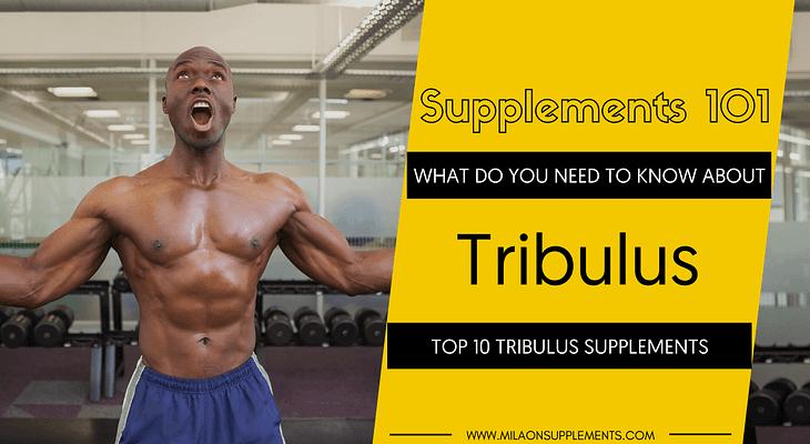 TOP 10 TRIBULUS SUPPLEMENTS