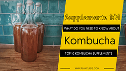 TOP 10 KOMBUCHA SUPPLEMENTS