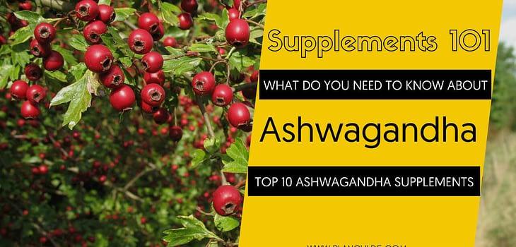 TOP 10 ASHWAGANDHA SUPPLEMENTS