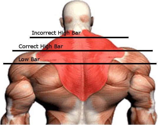 High Bar vs. Low Bar Squat - bar placement
