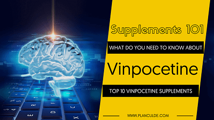 TOP 10 VINPOCETINE SUPPLEMENTS