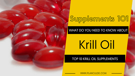 TOP 10 KRILL OIL SUPPLEMENTS