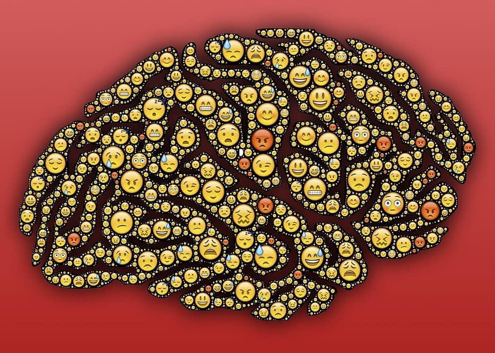 Emotions brain-muscle connection