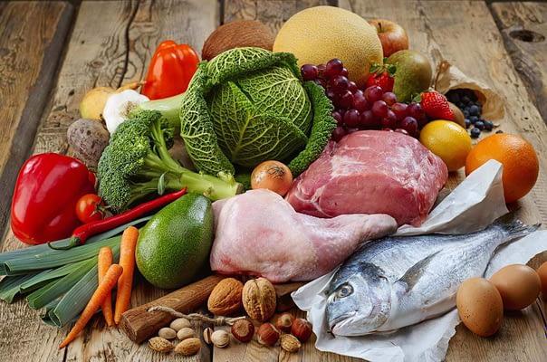 What is Paleo Diet